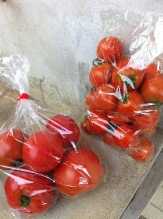 010_110723_お土産トマト